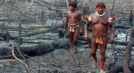 indiens-amazonie-dernier-combat2-480x264
